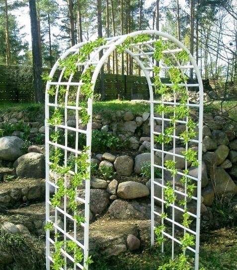 Садовые арки своими руками из пластиковых труб фото